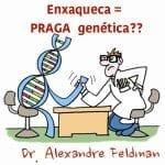 Enxaqueca é hereditária? Praga genética?